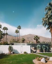 avalon avalonhotel avalonpalmsprings palmsprings palm springs luxuryhotel boutiquehotel travel california venicecalifornia venicebeach california losangeles travel